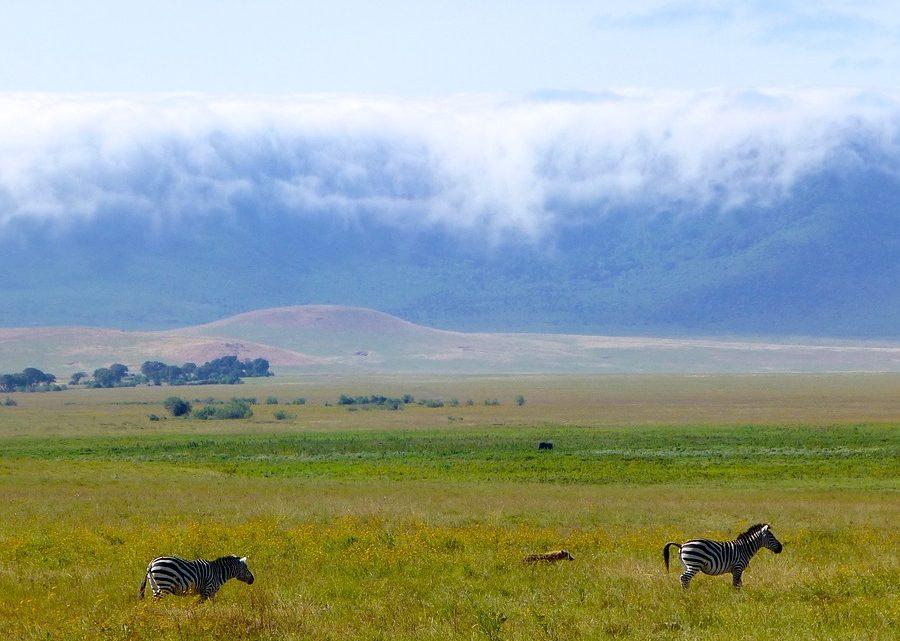 Les modalités d'une exploration sensationnelle à travers le territoire tanzanien