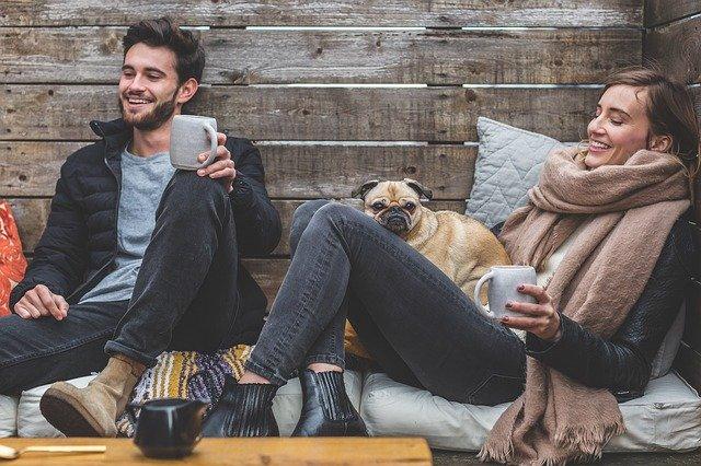 Conseils pour travailler à la maison avec des animaux de compagnie