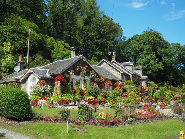 Jardinage écologique : faites pousser des légumes savoureux et des fleurs magnifiques de manière saine
